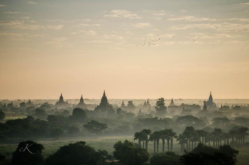 Birmanie Nikon -20